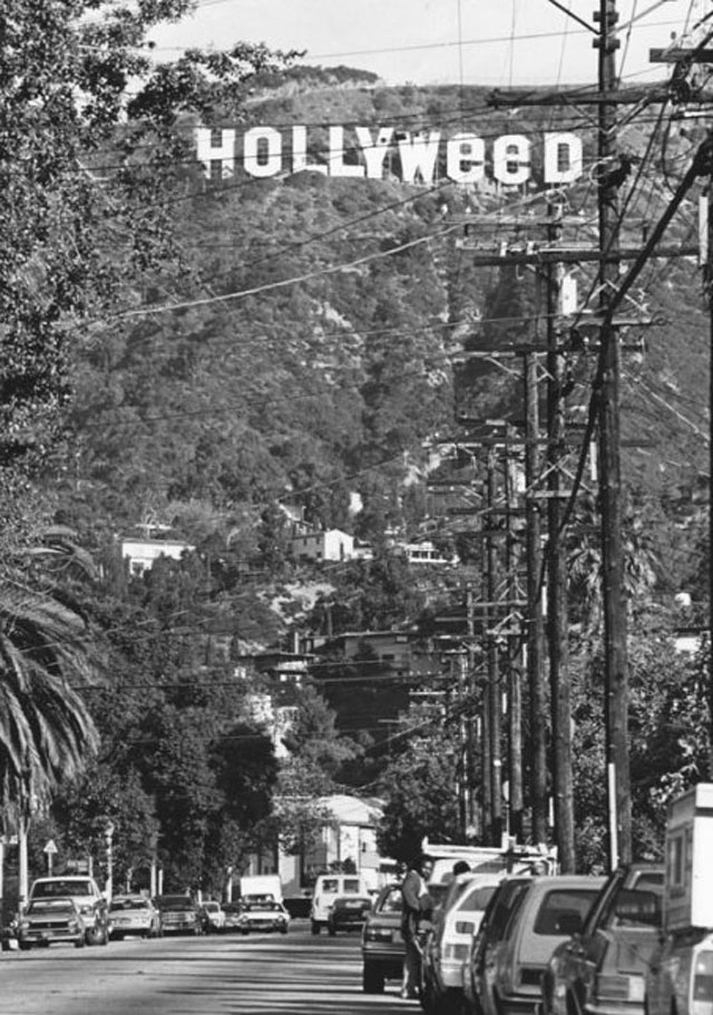 hollyweed-prank