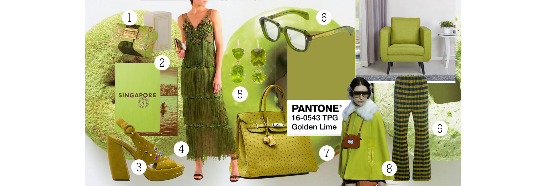 10-goldel-lime-pantone-colour