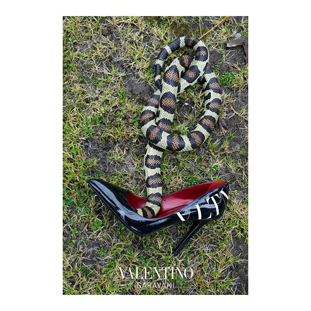 An exotic snake meets the latest Valentino Garavani statement heels where the #VLTN logo adds urban appeal to these glossy pumps. #HautePunk Creative Director: @pppiccioli Photographer: @juergentellerstudio