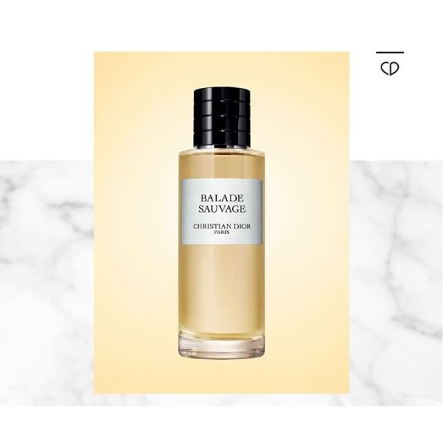 """If you are lucky enough to visit the island of Panarea, you can feel the sea breeze and the mineral aspect of the volcanic stone warmed by the sun and smell the flowers, fruits and rockrose.This fragrance draws inspiration from these strong sensations, like a moment spent in the shade of the fig tree, where effusive citrus fruits and a fresh breeze reminiscent of the Mediterranean sun, are liberated.     #françoisdemachy Dior perfumer creator.#maisonchristiandior @diorparfums"