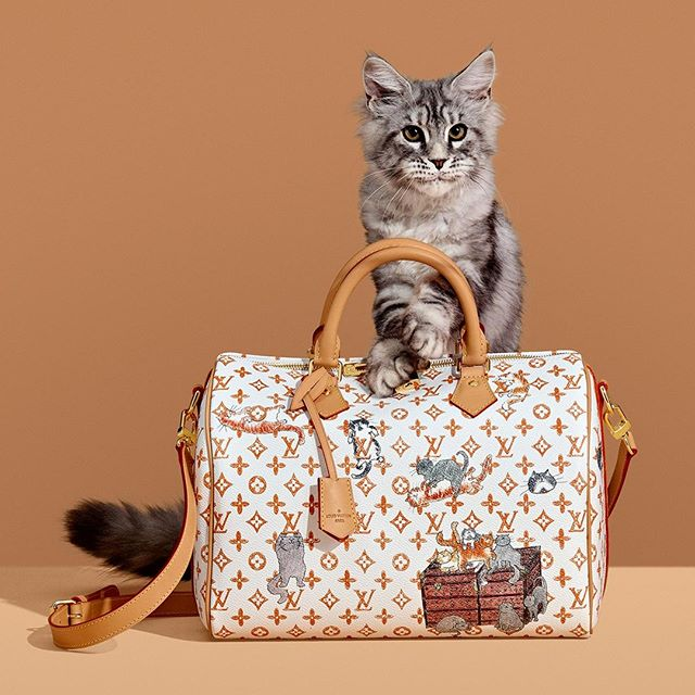CATOGRAM LOUIS VUITTON In this version of the Speedy bag from the 2019  Cruise Collection 099858567947f