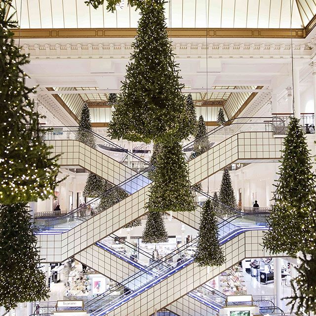 HOLIDAY SEASON - LE BON MARCHÉ The holiday season has just started at @lebonmarcherivegauche! Until December 30, don t miss a chance to meet the king of the northern forests, the Christmas tree, passing by Le Bon Marché s staircase hall.  Come wander and discover the latest trendy items in this magical setting.  _ #LeBonMarche #VuAuBonMarche #MonBeauSapin