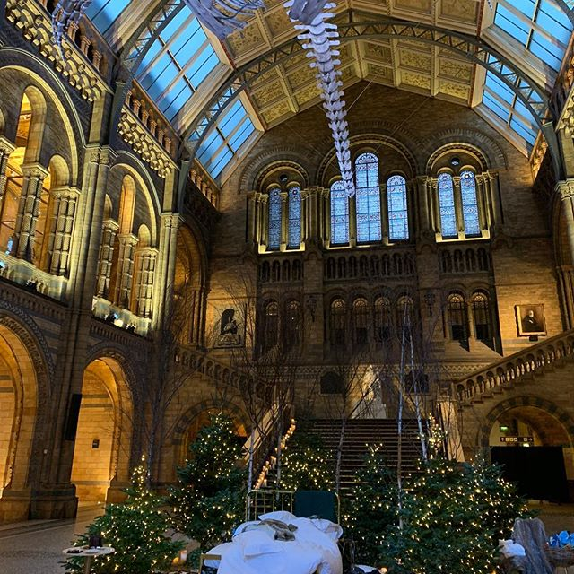 Had a whale of a time @natural_history_museum   it was over-whale-ming