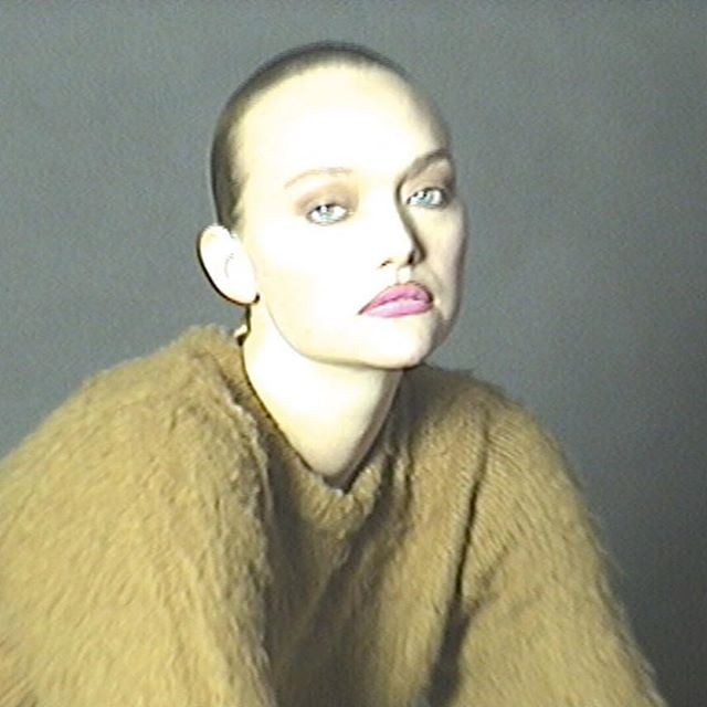 We missed that face, @gemma!    [The Superstar Issue, no. 354, Winter 2018] . . . Photography @sharnaosborne  Styling #juliasarrjamois Gemma Ward wears jumper @Stussy #GemmaWard #Fashion #Stussy