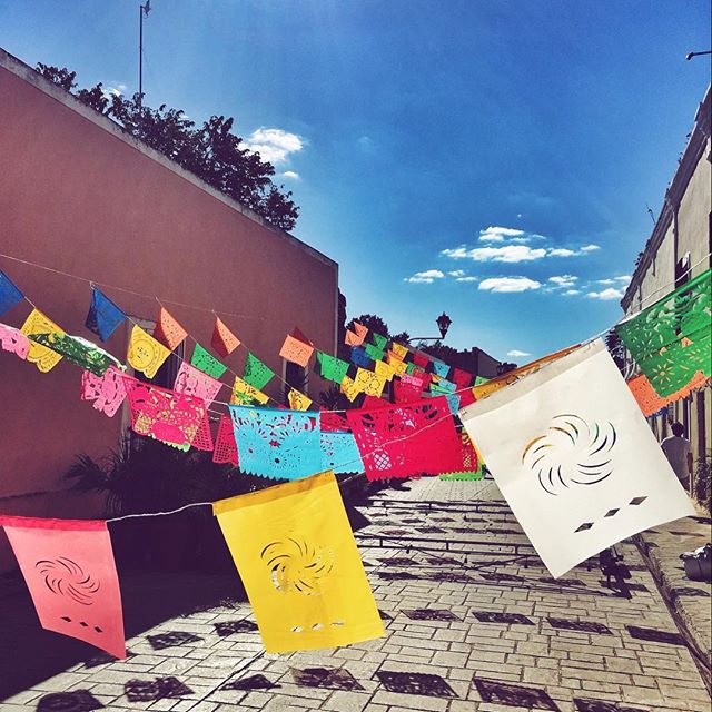 Festival   . #mexico #valladolid #festival #colors